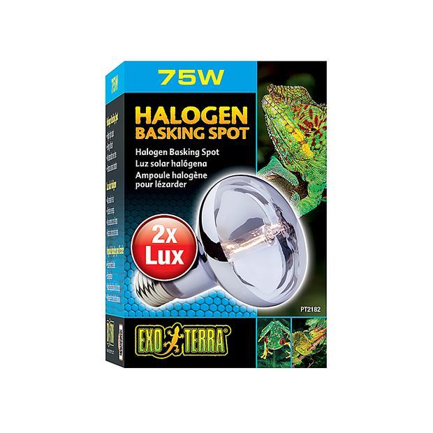 Exo Terra Halogen Basking Spot Lamp 75w Pet: Reptile Category: Reptile & Amphibian Supplies  Size:...