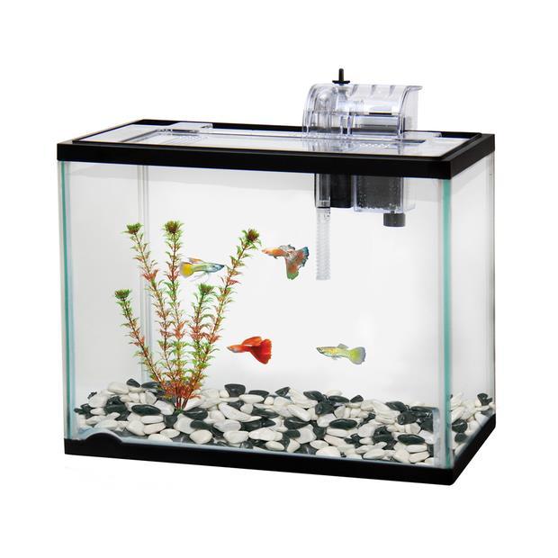 Classica Aquarium Starter Kit 12L Pet: Fish Category: Fish Supplies  Size: 4kg  Rich Description:...