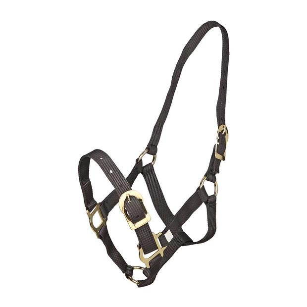 Zilco Pp Halter Full Size Pet: Horse Size: 0.3kg Colour: Black  Rich Description: Originating in...