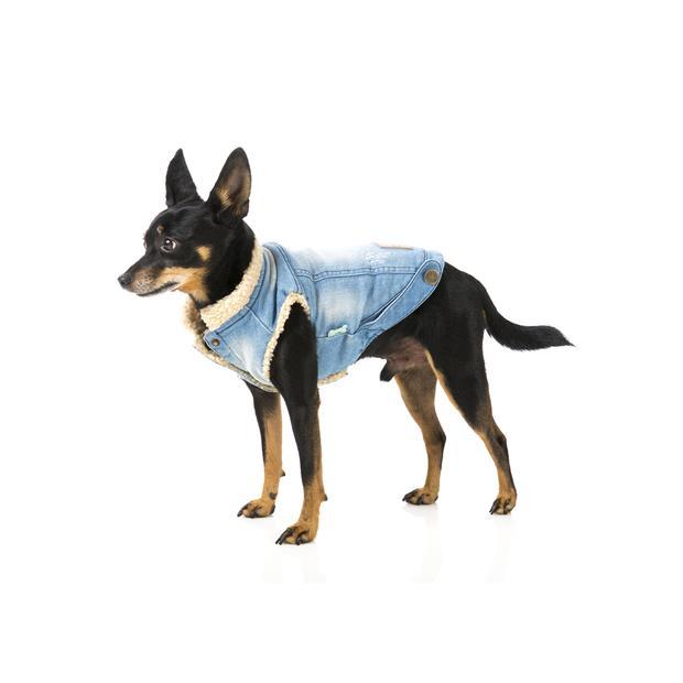 Fuzzyard Jacket Rebel Denim Size 7 Pet: Dog Category: Dog Supplies  Size: 0.2kg Colour: Blue  Rich...