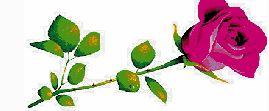 GREEN, Helen Valdera    01.02.1926~28.09.2020   My beloved sister Helen,    Much loved and loving...