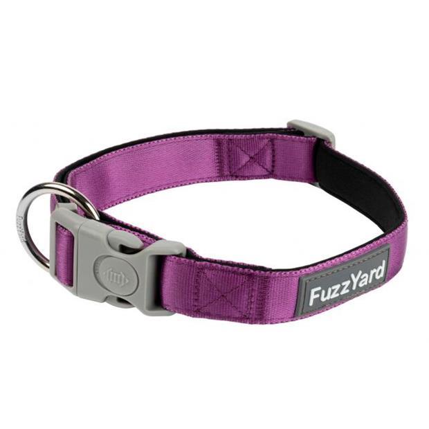 Fuzzyard Dog Collar Grape Medium Pet: Dog Category: Dog Supplies  Size: 0kg Colour: Purple  Rich...