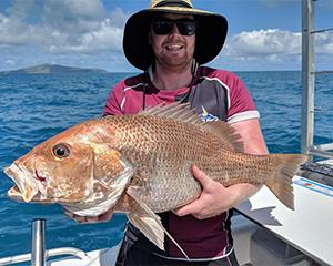 Head out for an adventure around the world-famous Whitsundays on this half day fishing charter from...