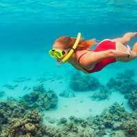 Adventure lovers, have we got an offer for you! Jump aboard a four-hour snorkelling charter and prepare...