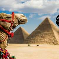 Follow the path of the pharaohs on this nine-day deluxe small-group tour (max. 12 travellers) and watch...