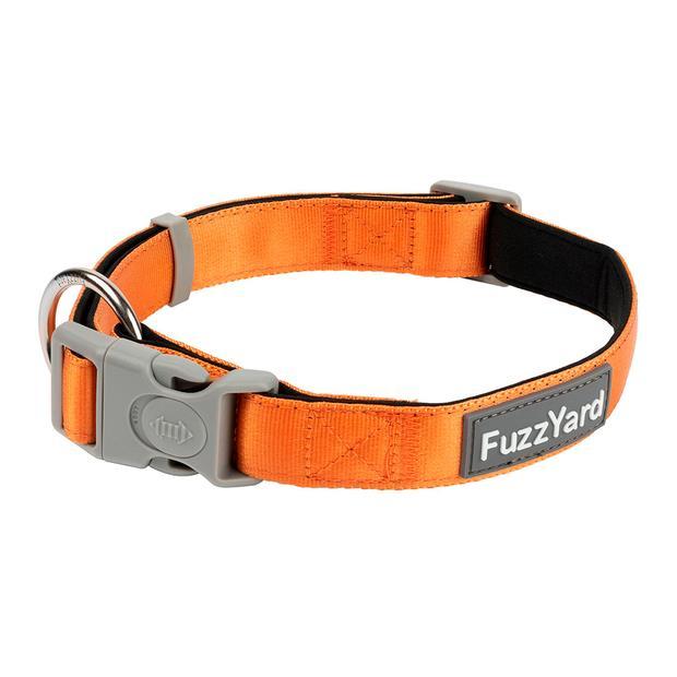 Fuzzyard Dog Collar Crush Large Pet: Dog Category: Dog Supplies  Size: 0.1kg Colour: Orange  Rich...