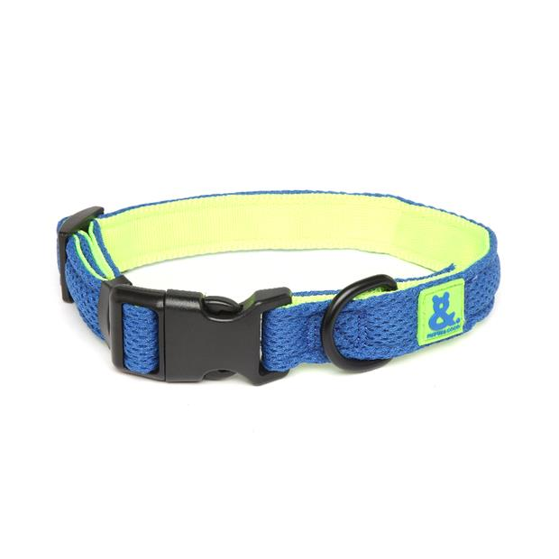 Rufus And Coco Dog Collar Air Mesh Blue And Green X Small Pet: Dog Category: Dog Supplies  Size: 0kg...