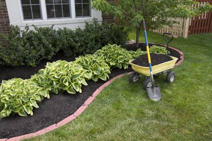 A BARGAIN GARDENER    
