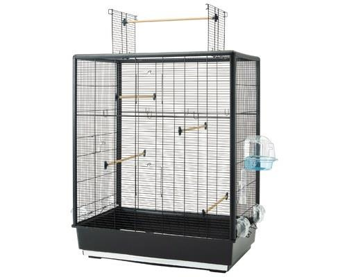 SAVIC PRIMO 60 OPEN EMPIRE BIRD CAGEYour birds deserve more than just a cage, they deserve an empire.