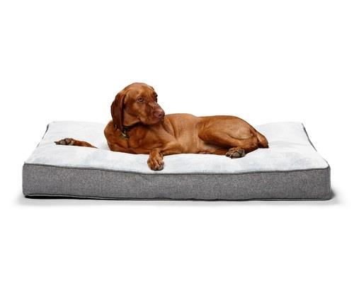 SNOOZA SHAPES OBLONG OSLO LARGEThe softest cushion around! These beds are great for tummy sleepers and...