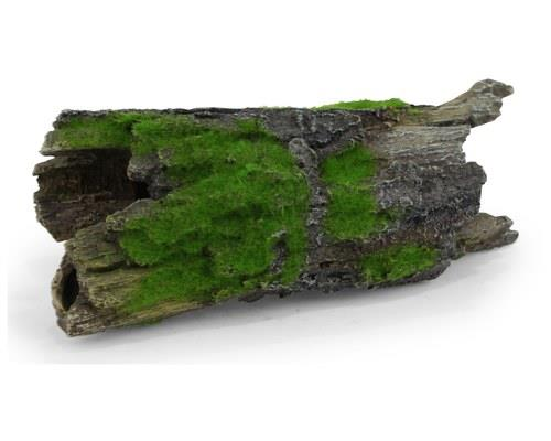 KAZOO DRIFTWOOD W/TEXTURED MOSS - LARGE'The accumulation of slime and sea moss tells you all that you...