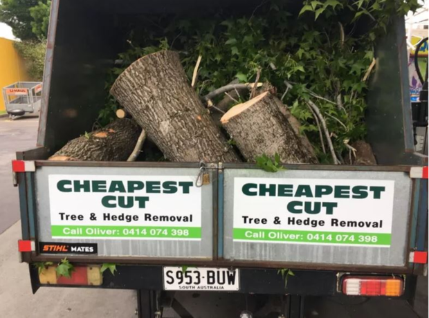 Tree, Stump & Hedge RemovalHedge Shaping & TrimmingMulching & CleanupsFully InsuredCall...