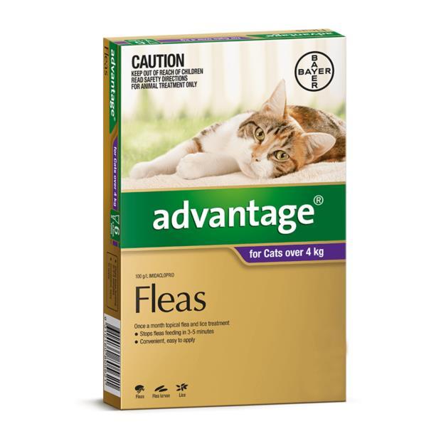 Advantage Cat Large Purple 4 Pack Pet: Cat Category: Cat Supplies  Size: 0.2kg  Rich Description:...
