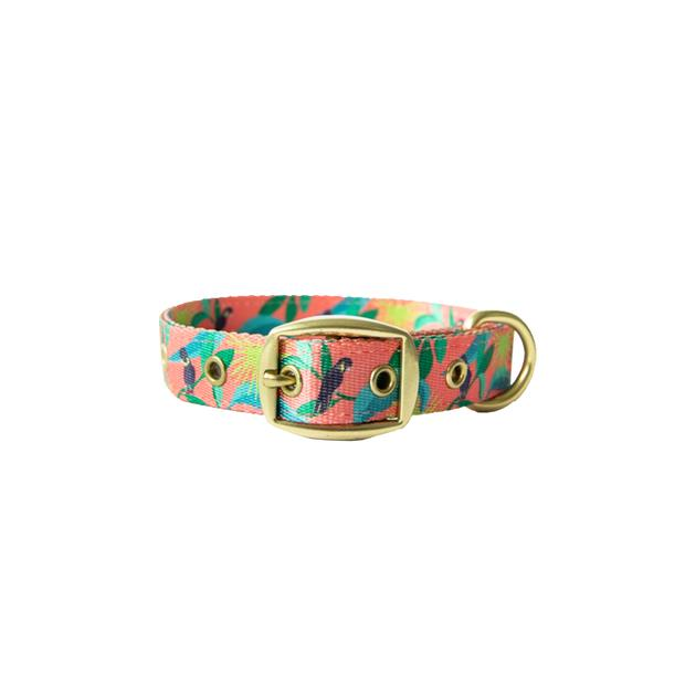 Anipal Clancy The Black Cockatoo Dog Collar Small Pet: Dog Category: Dog Supplies  Size: 0.1kg...