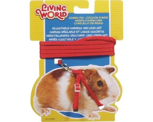 Living World Guinea Pig Harness and Lead Set, Red, One SizeHarness: One size fits most guinea...