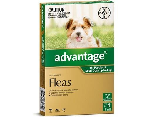Advantage Flea Treatment for Puppies and Dogs Under 4kg, 4 Months Supply GreenAdvantage flea treatment...