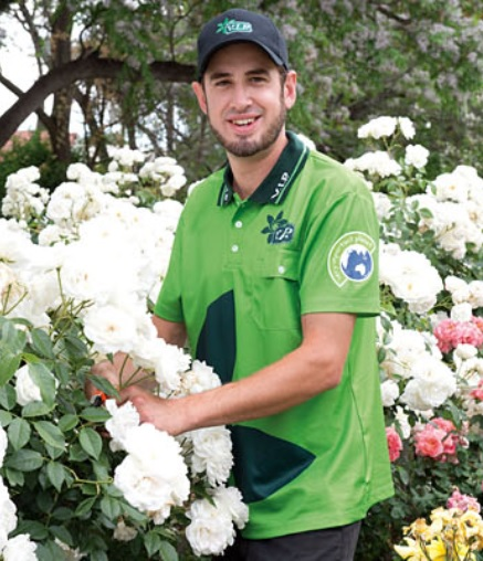 Services available in Morayfield/North Lakes area      - Lawn Mowing   - Pruning   ...