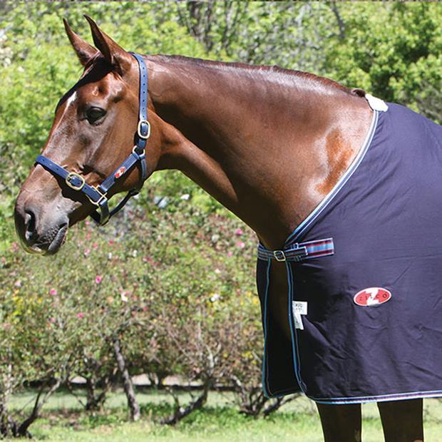 Zilco Defender Cotton Dress Rug 183cm Pet: Horse Size: 1.2kg Colour: Blue  Rich Description:...