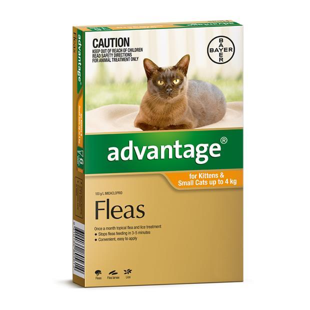 Advantage Cat Small Orange 4 Pack Pet: Cat Category: Cat Supplies  Size: 0.1kg  Rich Description:...