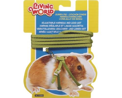 Living World Guinea Pig Harness and Lead Set, Green, One SizeHarness:One size fits most guinea...