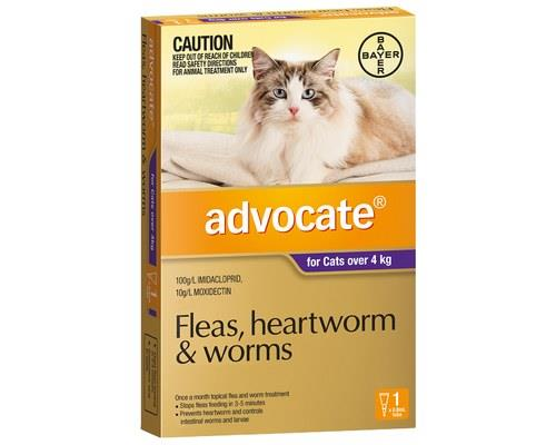 ADVOCATE PURPLE FOR CATS OVER 4KG (1PK)Advocate Purple is formulated for cats over 4kg . This...