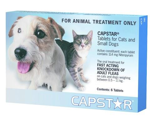 For fast relief from adult fleas!When your dog or cat is suffering from dreaded adult fleas...