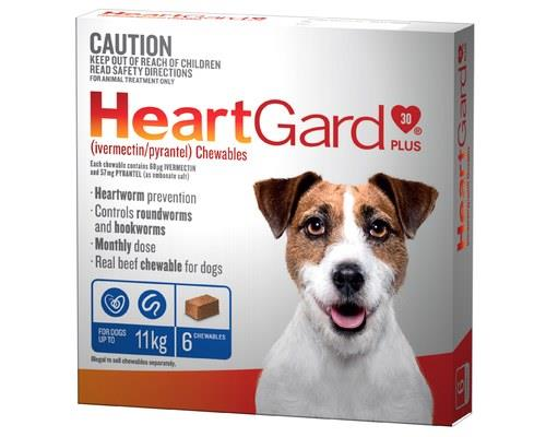 The damage heartworms can causeHeartworms (up to 30cm long in dogs) live in the heart and blood vessels...