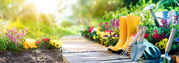Arthur's Horticultural ServicesGarden Maintenance PruningTurf maintenanceAboriculture workGreen waste...