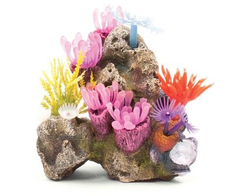 KAZOO SOFT GRASS CORAL WITH ROCKDon't you wish your garden looked this good? This coral fish tank...