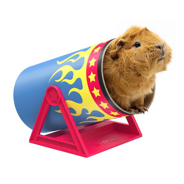 Haypigs Cavy Cannonball Tilting Tunnel Each Pet: Small Pet Category: Small Animal Supplies  Size: 0.3kg...
