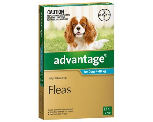 ADVANTAGE DOG MEDIUM 1X1.0MLThis spot-on flea treatment has been formulated for dogs that weigh 4-10kg.