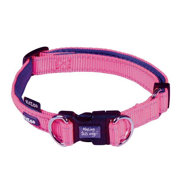 Kazoo Collar Active Adjustable Bloom Burst Medium Pet: Dog Category: Dog Supplies  Size: 0kg Colour:...
