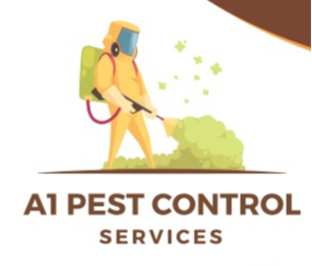 We Service all general pest control services including timber pests and we have a solution for:AntsRats...