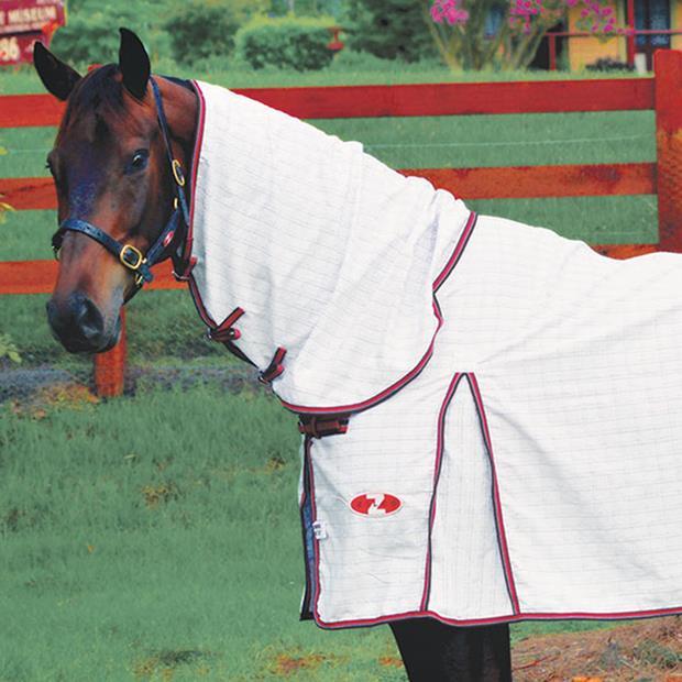 Zilco Econostop Combo 183cm Pet: Horse Size: 2.5kg Colour: White  Rich Description: Originating in...