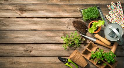 Garden MakeoverTrimmingTurfing / ArtificialPruningWeedingRetaining WallsPavingTree worksLand...