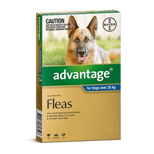 Advantage Dog Extra Large Blue 2 X 6 Pack Pet: Dog Category: Dog Supplies  Size: 0.4kg  Rich...