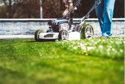 Specialising in:Lawns, Edges & Fertilising & Weed Control.20 years exp. Fully insured.Phone...