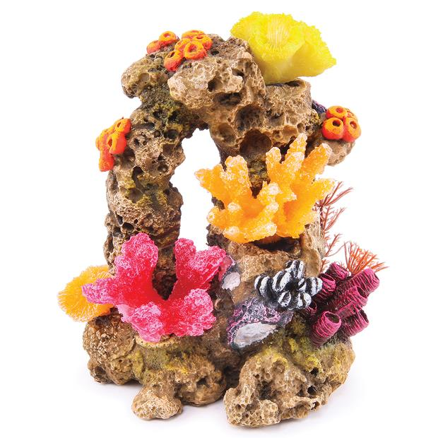 Kazoo Reef Rock Wwith Coral And Plants Medium Pet: Fish Category: Fish Supplies  Size: 0.4kg  Rich...