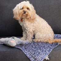 La Doggie Vita Blanket Plush Dog Central Indigo Large Pet: Dog Category: Dog Supplies  Size: 0.6kg...