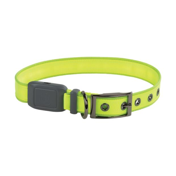 Nitedog Rechargeable Led Collar Xlarge Pet: Dog Category: Dog Supplies  Size: 0.1kg Colour: Green  Rich...
