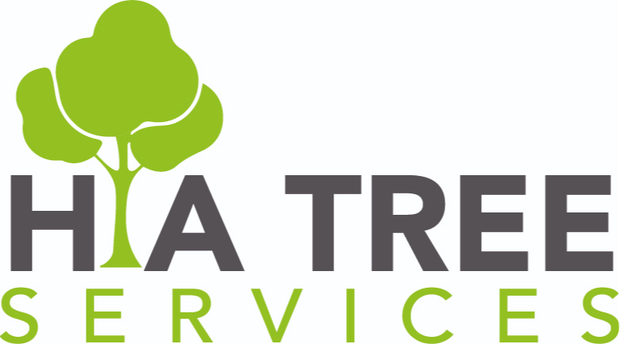 TREE REMOVAL - TREE PRUNING - 24 HOUR EMERGENCY- Qualified Arborist- Fully Insured- Free Quotes- All...