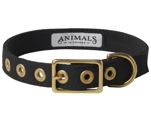 ANIMALS IN CHARGE BLACK COLLAR EXTRA LARGEExtra-large and extra-fashionable, this gorgeous alternative...