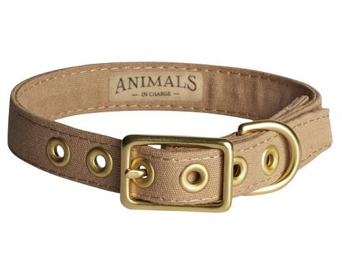 ANIMALS IN CHARGE LATTE + BRASS ALL WEATHER COLLAR: EXTRA LARGEAnimals in Charge let you take charge!