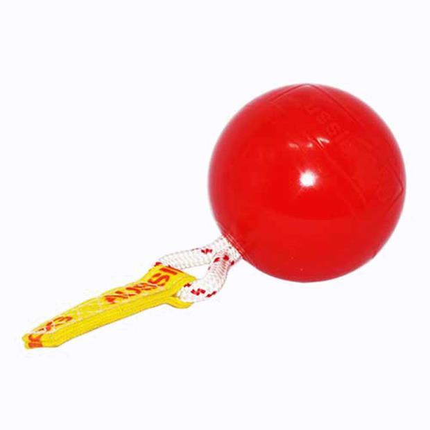 Aussie Dog Mini Horse Ball Each Pet: Horse Size: 0.8kg  Rich Description: Aussie Dog toys are durable...