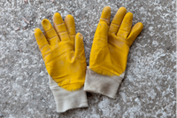 AAA Backyard Clean UpLOCAL, Honest & Reliable• Trees & Palms Cut/Pruned• All Rubbish Removal•...
