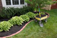 Lawn/Garden MaintenanceLawn Coring & ScarifyingRotary HoeingPruning & HedgingGarden...