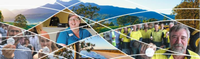 • RFO2021073 Panel of Providers – Trade Services Tweed Holiday Parks Offers close: Wednesday 12 noon...