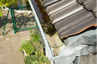 HIGH PRESSURE CLEANING SERVICE• Gutter Cleaning• Home Maintenance• Rubbish Removal• Gardening• Fully...
