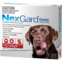 Nexgard is a delicious chew that kills fleas and ticks for a whole month, including deadly paralysis...