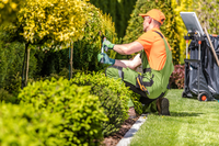 Garden renovations and makeoversFull maintenance and landscaping services Planting solutions and...